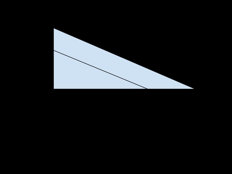 triangolo con parallela